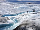Algae Blooms Are Adding to the Melt of the Greenland Ice ...
