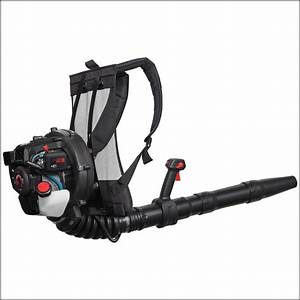 Sears Backpack Leaf Blower Parts