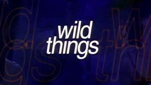 Wild Things: Trailer