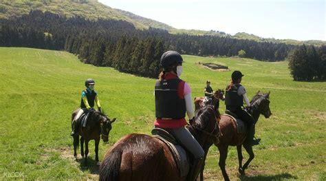 riding jeju horseback horse meong hallasan klook water riders experience beauty land south