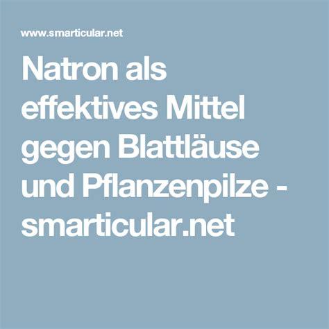 natron gegen ameisen natron als effektives mittel gegen blattl 228 use und