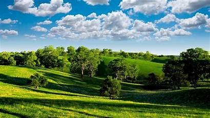 Nature Summer Landscape Sunny Landscapes