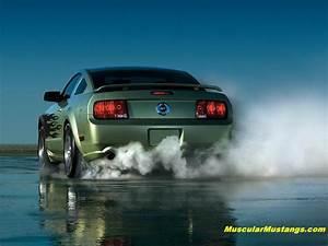 2005 Mustang Burnout Wallpaper
