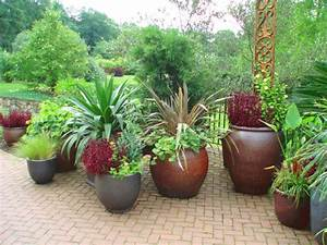 patio potted garden | Gardening and Plant Display ...