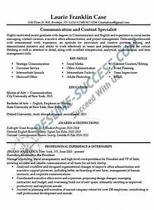 sample resumes resume success With sample resume for mid level position