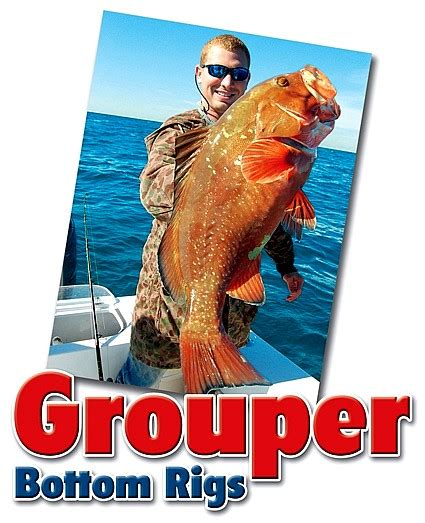 grouper fishing bottom rigs bait lot pros florida there fish dropping lie letting simply than