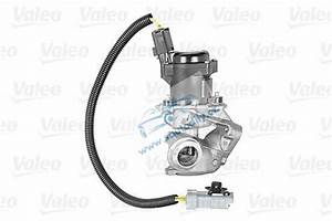 Agr Ventil Ford C Max 1 6 Tdci : egr agr ventil ford focus focus c max 1 6 tdci volvo 1 6d ~ Jslefanu.com Haus und Dekorationen