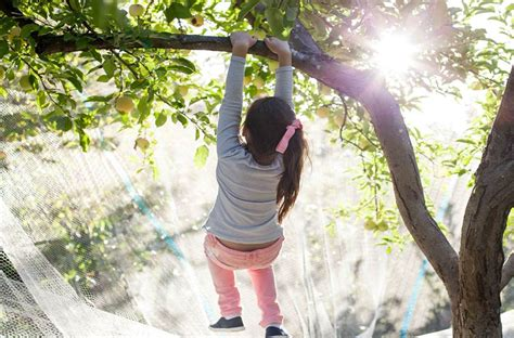 Winter Holidays - Nature Play Out Days, Matilda Bay ...