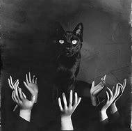 Black Cat Creepy Tumblr