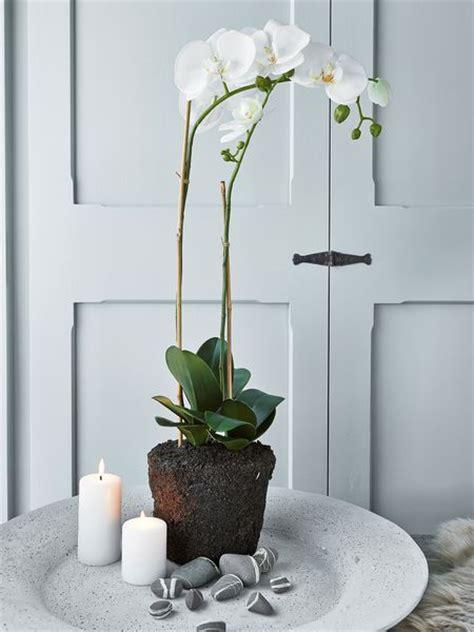 large faux orchid artificial orchid faux orchid