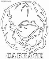 Cabbage Coloring Pages Colorings Print Food sketch template