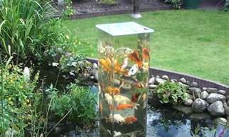 magnifique un aquarium ext 233 rieur de bassin pour observer les poissons elleadore
