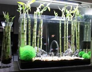 deco aquarium originale With wonderful meuble pour petite cuisine 10 la decoration avec un meuble aquarium archzine fr