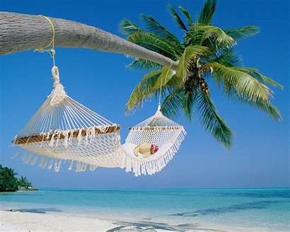 Tropical Scenery Beach Island Sea Tree Wallpapersafari