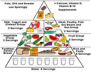 Healthy Balanced Diet Food