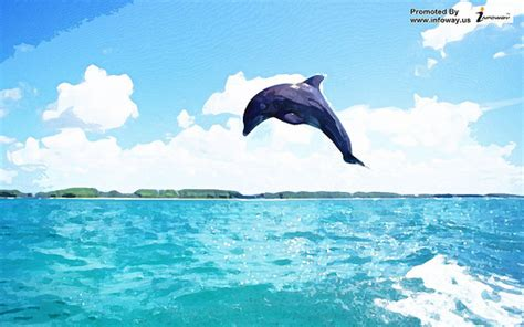Living 3d Dolphins Animated Wallpaper - 3d dolphin wallpaper wallpapersafari