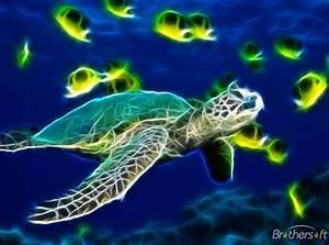 Free Sea Turtle Wallpaper Backgrounds - WallpaperSafari