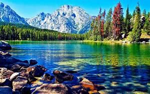 Beautiful, Lake, Mountain, Forest, Desktop, Wallpapers