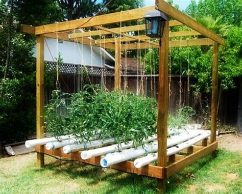 Best Images About Aquaponics Diy On Pinterest