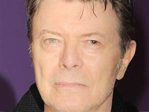 David Bowie's dog appears to have same eyes as late singer ...