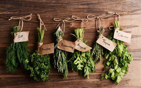 les herbes de cuisine les herbes aromatiques de l automne