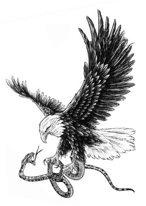 black white realistic bald eagle snake tattoo design