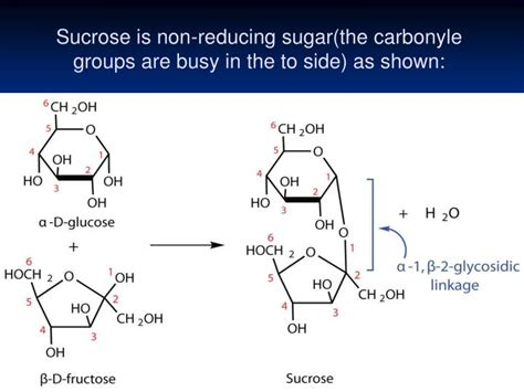 Ppt Reactions Of Reducing And Non Reducing Sugars Lab 2