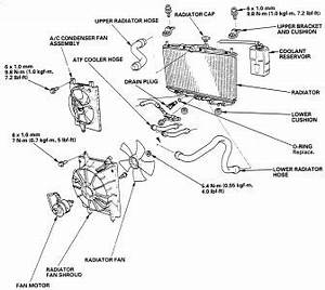 97 Dodge Ram Thermostat Location 97 Get Free Image About