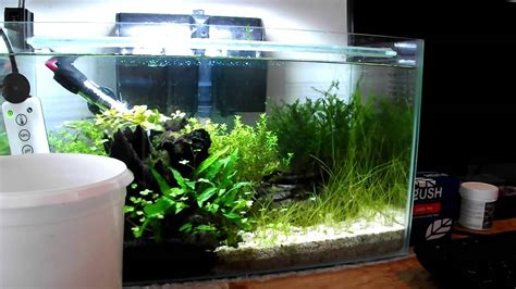 Small Tank Aquascaping by Small Planted Aquarium Rescape Using Aquariumplantfood Co