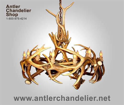 real antler elk mule deer oval chandelier elkmdinvt