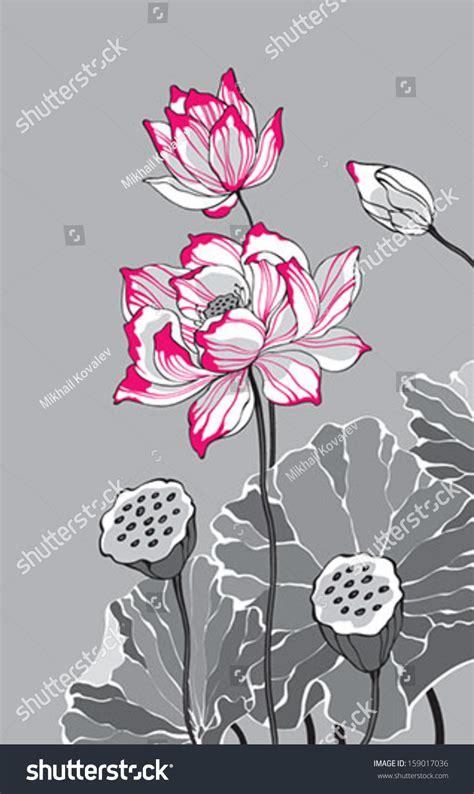 big pink lotus  grey background stock vector