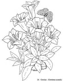 Realistic Flower Coloring Book Pages