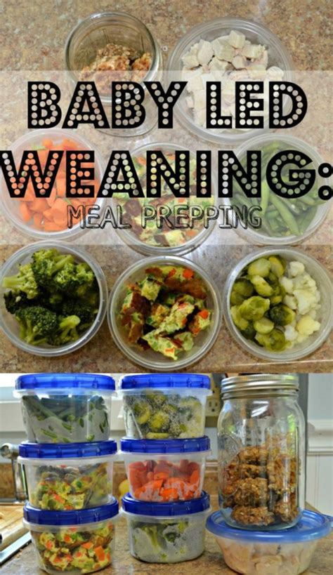 weaning baby led meal food foods lead prepping prep toddler recipes easy blw meals proteins mommyhood manages morgan pincer grip
