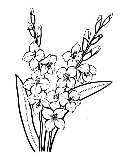 image result  gladiolus flower outline inkskiii