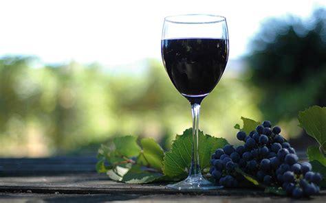 Katram vīnam sava glāze! Kādas glāzes piemērotas ...