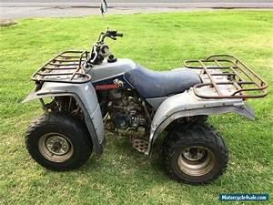 Quad Yamaha 250 : used yamaha timberwolf yfb 250 atv quad bike for sale in australia ~ Medecine-chirurgie-esthetiques.com Avis de Voitures