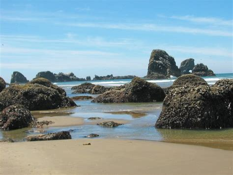 ecola state park cannon beach or 2017 reviews top