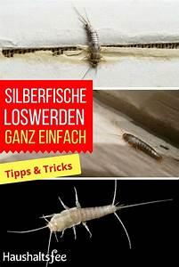 Was Sind Silberfische Und Woher Kommen Sie : 261 best toilette wc reinigen images on pinterest ~ Lizthompson.info Haus und Dekorationen