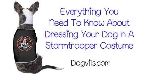 How To Dress Your Pooch