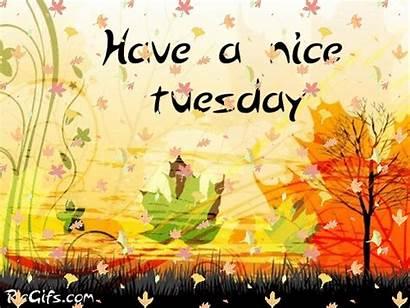 Tuesday Morning Gifs Nice Hope