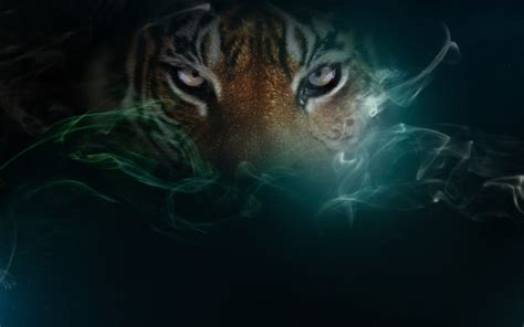 Real Tigers Wallpaper Full Free Top Hairstyle
