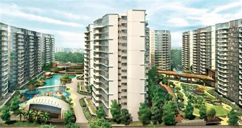 Everything To Know About Private Condo