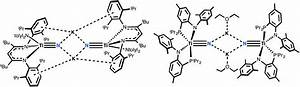 Molecular Titanium Nitrides  Nucleophiles Unleashed