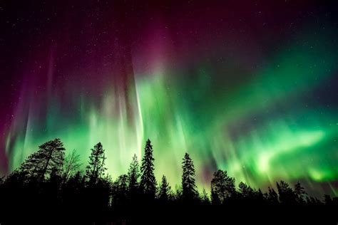 northern lights nova scotia the ultimate list of things to do in nova scotia stefanrtw