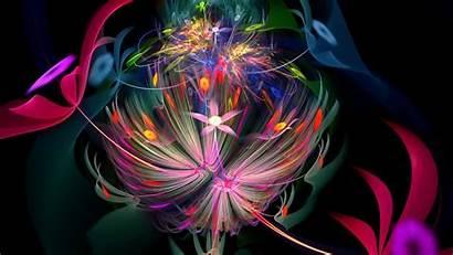 Bright Lines Patterns Fractal Flower 1080p Background