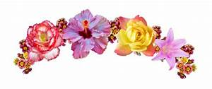 flower crown png | Tumblr