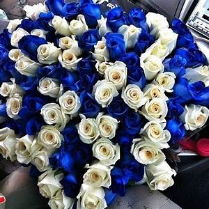 Blue And White Roses Pictures, Photos, and Images for ...