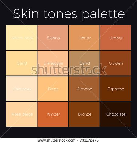american skin color skin tone stock images royalty free images vectors