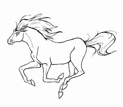 Horse Coloring Pages Horses Printable
