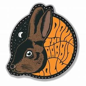 Doune The Rabbit Hole 2017 | Bookitbee